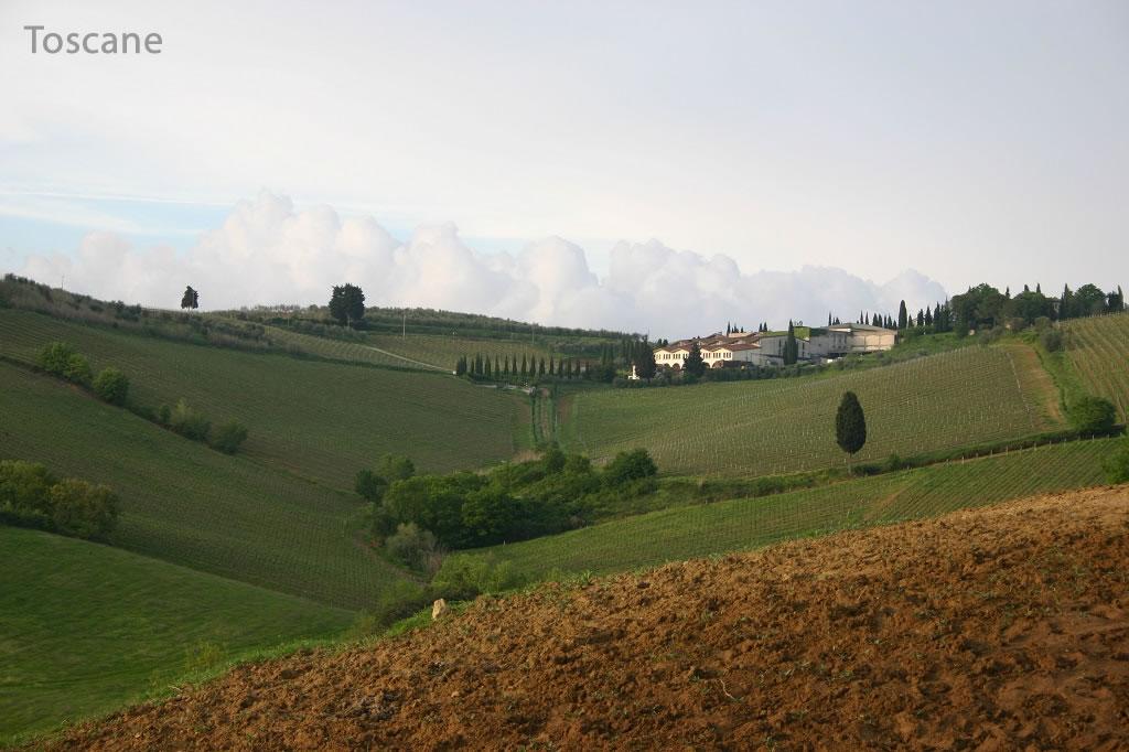 Korte trips-Toscane