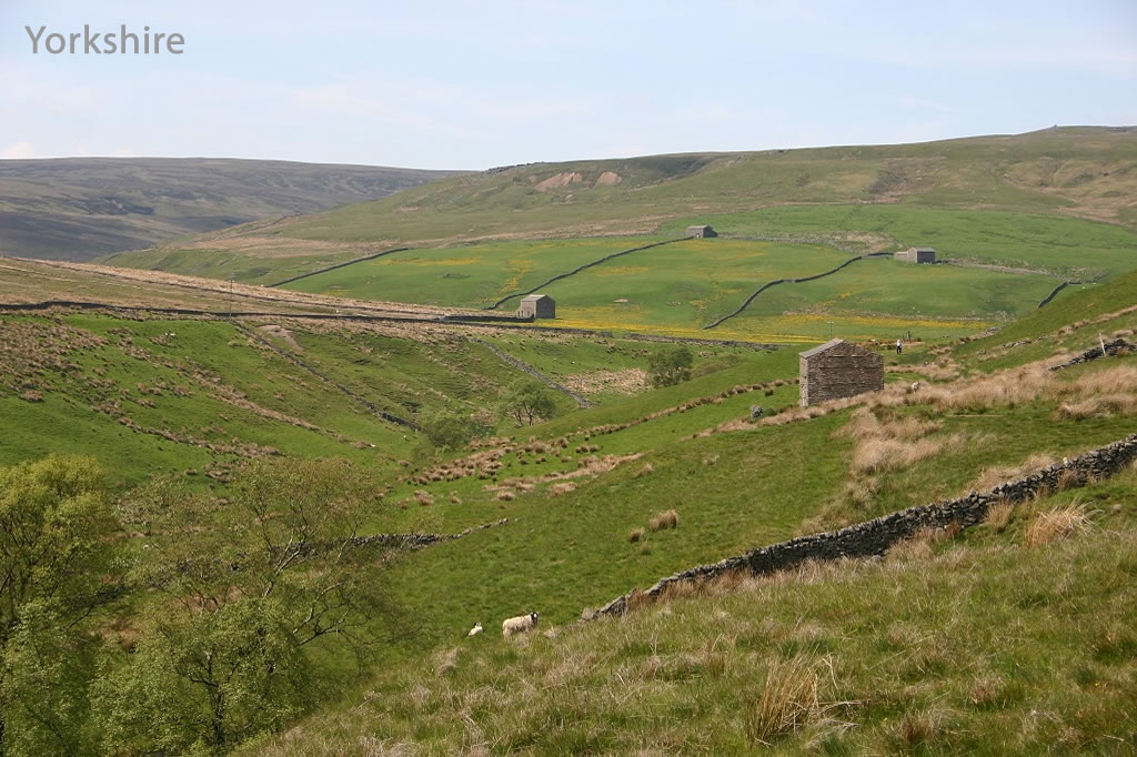 Korte trips-Yorkshire
