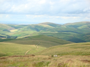 The Cheviot Hills