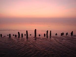 Rijsdammen onder de noord-Groningse Waddendijk